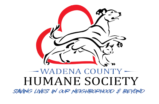 wadena county dating Meet wadena singles online & chat in the forums dhu is a 100% free dating site to find personals & casual encounters in wadena.
